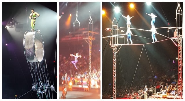 Ringling Bros circus stunts