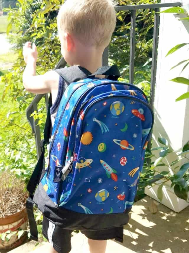 wildkins space backpack