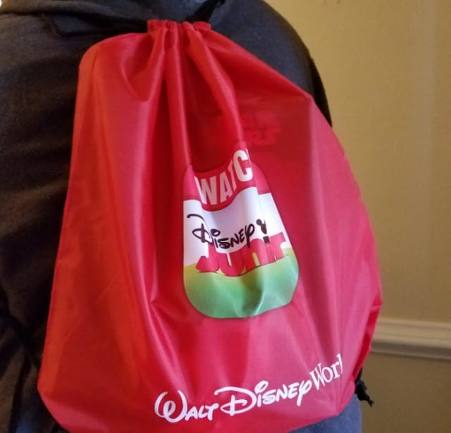 Walt Disney World bag for a Disney Kids Playdate