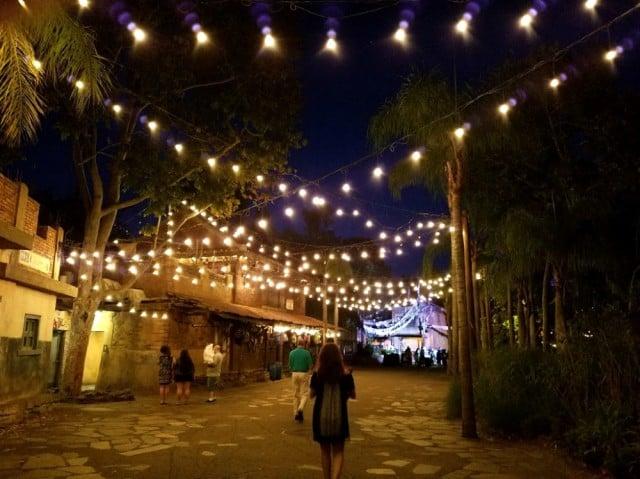 asia disney animal kingdom at night