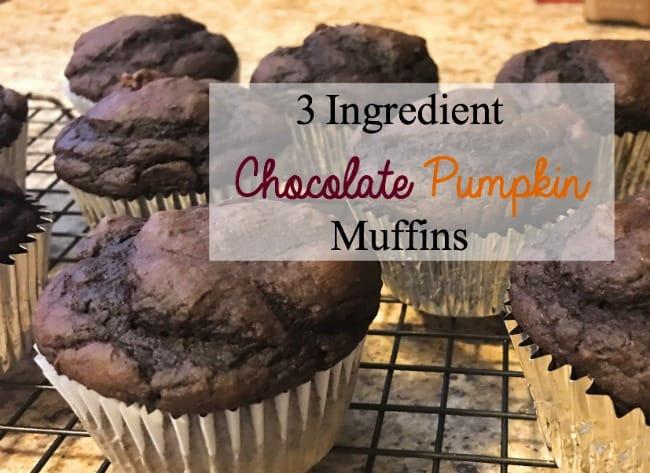 3 Ingredient Chocolate Pumpkin Muffins