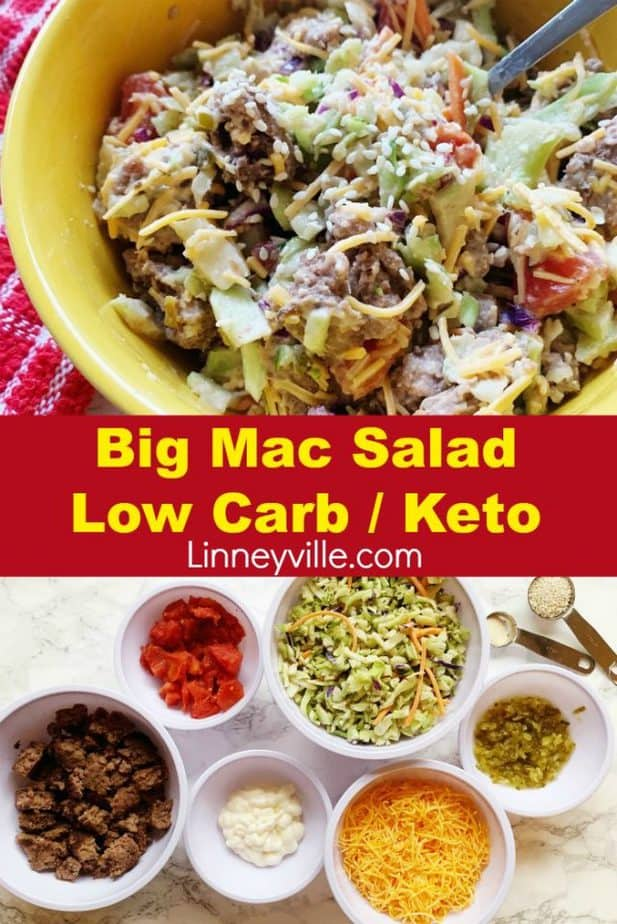 big mac salad pin